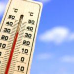 機械学習を応用して「ナメクジ」の発生を気象条件から予測する