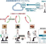 AIで皮膚疾患の診断サポートシステム、実用化に向けて筑波大と京セラが共同研究